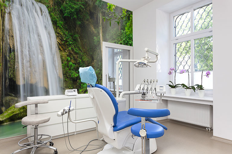 dental office with rainforest wall mural