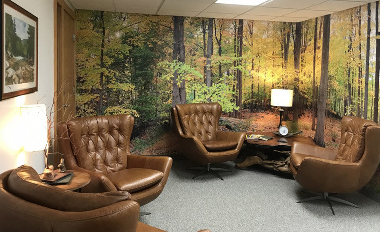 Bear Mountain Forest Wall Mural in reception area