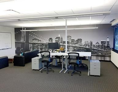 New York City Wall Mural in Office
