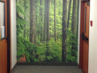 create your own wall mural example