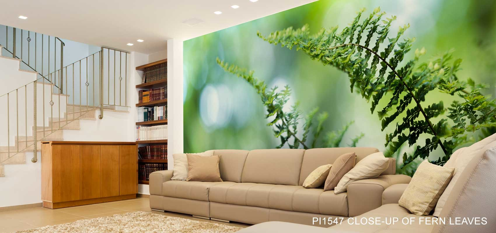 Close-up Of Fern Leaves Wall Mural