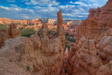 A Journey Through Bryce Canyon Wall Mural