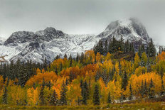 A Rocky Mountain Autumn Mural Wallpaper