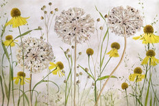 Alliums and Heleniums Mural Wallpaper