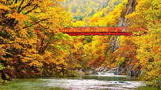 Red Bridge Over Autumn Stream in Jozankei Japan Wallpaper Mural