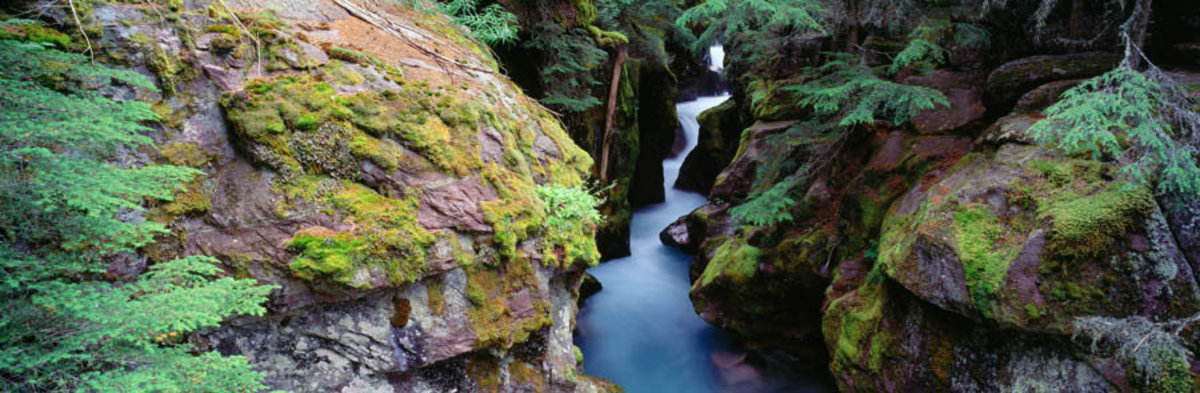 Avalanche Gorge Wall Mural