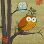 Awesome Owls Wall Mural