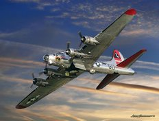 B-17 Special Delivery (No Text) Mural Wallpaper
