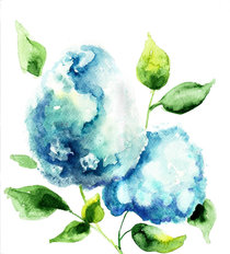 Beautiful Watercolor Hydrangea Blue Flowers Wallpaper Mural
