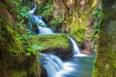 Beautiful Waterfall In Tropical Rainforest In Hawaii Wall Mural