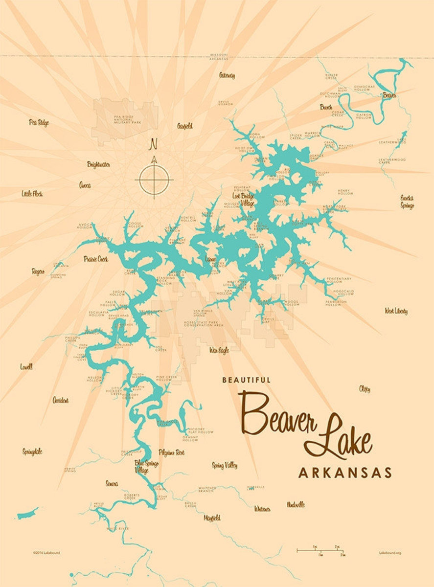 Beaver Lake, AR Lake Map Wallpaper Mural