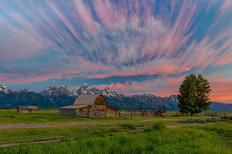 Beneath Teton Glory Wall Mural