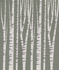 Birch Trees Illustration Mural Wallpaper