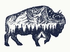 Bison Tourism Woodblock Wall Mural