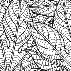 Black And White Leaves Pattern Wallpaper