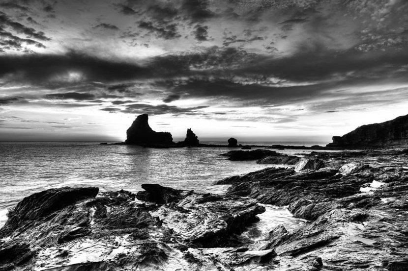 Black and White Tide Pools and Rocks Wall Mural