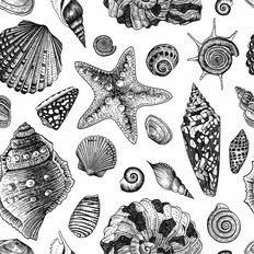 Black & White Seashell Wallpaper