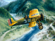 Boeing Country Wall Mural