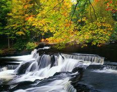 Bond Falls in Autumn Wall Mural