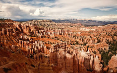 Bryce Canyon National Park Wallpaper Mural