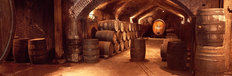 Buena Vista Winery Wine Barrels Wall Mural