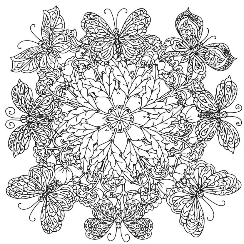 Colorable Butterfly Mandala