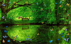 Butterfly Pond With Horse Wallpaper Mural