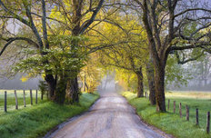 Cades Cove Sparks Lane Wallpaper Mural