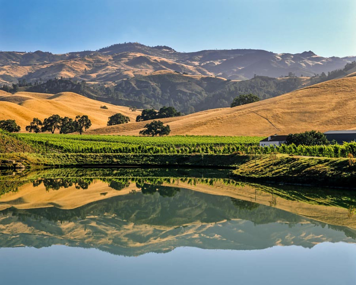 California Central Coast Vineyards Mural Wallpaper