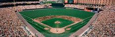 Camden Yards Baseball Field Wall Mural