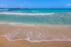Caribbean Gentle Waves Mural Wallpaper