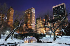 Central Park in Winter Mural Wallpaper