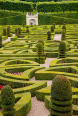 Chateau Villandry Garden Wallpaper Mural
