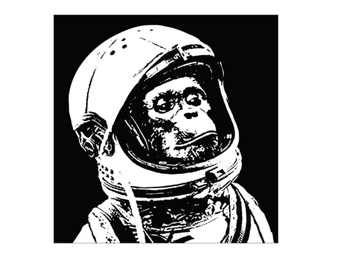 Chimp in Space Wall Mural