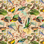 Colorful Birds Wallpaper