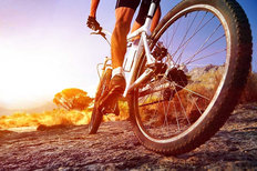 Cyclist Riding Mountain Bike Wallpaper Mural