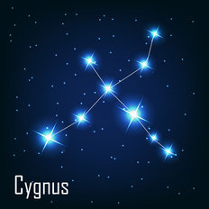 Cygnus Constellation Wall Mural