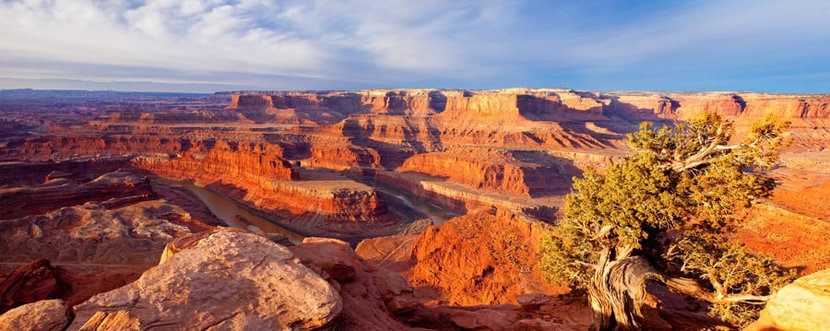 Dead Horse Point Panoramic Wall Mural