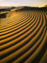 Death Valley Curved Dunes Mural Wallpaper