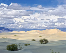 Death Valley Dunes Wallpaper Mural