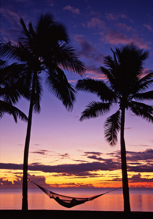 Two coconut palm trees on Fiji island overlook the ocean toward a beautiful sunset.
