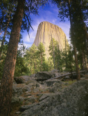 Devil's Tower Mural Wallpaper