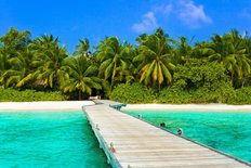 Dock To Sandy Beach And Jungle  Wall Mural