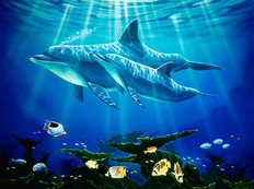Dolphin Reef (Wilkie) Wallpaper Mural
