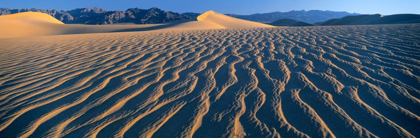 Dune Field, Death Valley National Park California