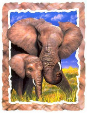 Elephant Love Wallpaper Mural