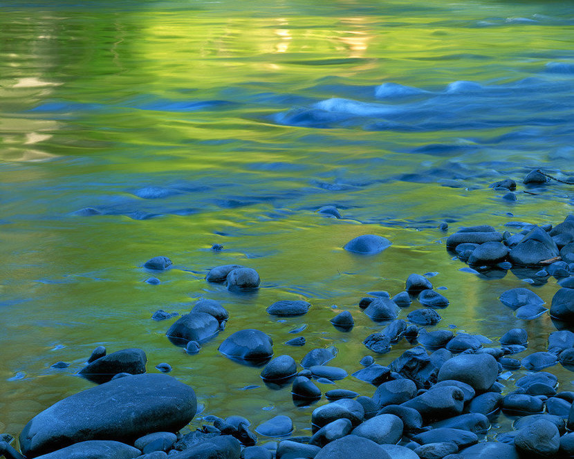Elwha River, Olympic National Park Wall Mural