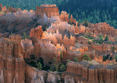 Fairy Castle, Bryce Canyon National Park, UT Wallpaper Mural