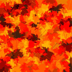 Fall Leaves II Wallpaper Mural