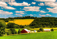 Farm Fields And Rolling Hills Mural Wallpaper